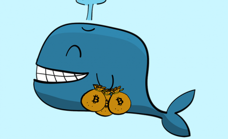 Who are cryptocurrency whales and how do they affect the market?